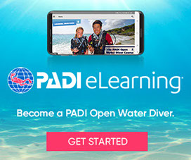 Scuba Dive St. Thomas USVI with PADI Open Water Diver certification