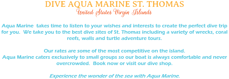DIVE AQUA MARINE ST. THOMAS United States Virgin Islands Aqua Marine takes time to listen to your wishes and interests to create the perfect dive trip for you. We take you to the best dive sites of St. Thomas including a variety of wrecks, coral reefs, walls and turtle adventure tours. Our rates are some of the most competitive on the island. Aqua Marine caters exclusively to small groups so our boat is always comfortable and never overcrowded. Book now or visit our dive shop. Experience the wonder of the sea with Aqua Marine.